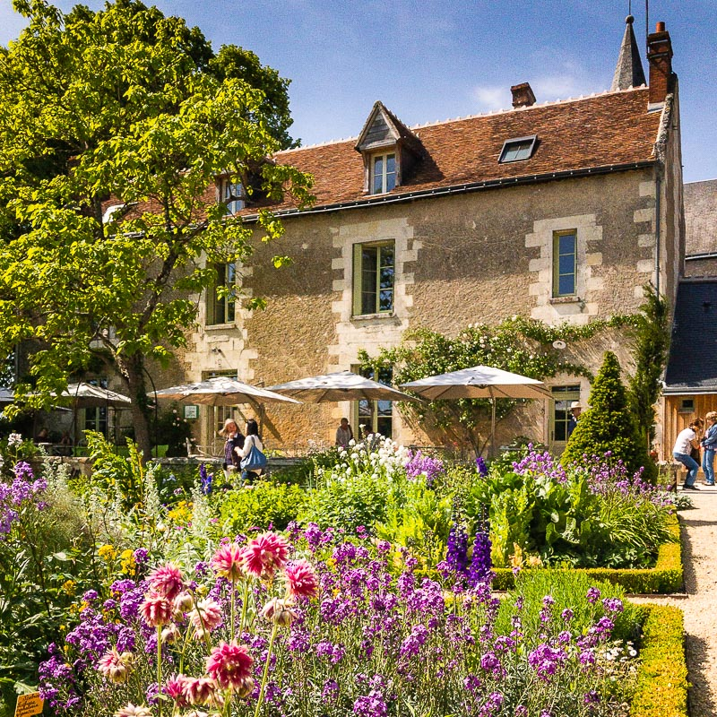 Closerie du Tilleul, a nice place to lunch during your Chédigny tour, a village garden full of roses and perennial plants, with also a traditionnal jardin de curé: the presbytory garden. Just enjoy the roses perfume! Loire Valley, France.