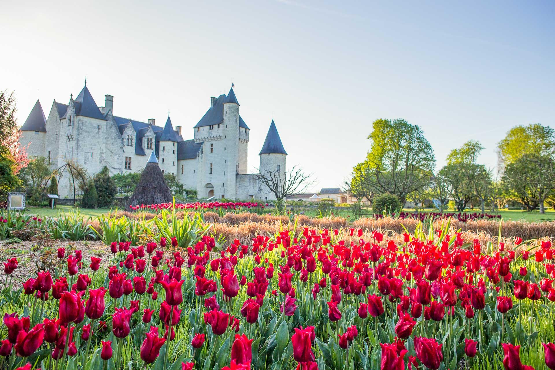 Château du Rivau gardens - Loire Valley