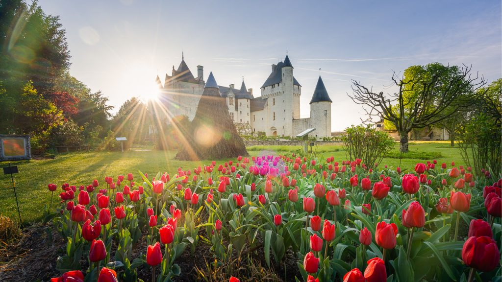 Welcome to the garden of France. In Loire Valley, there are numerous garden to visit, like the gardens of the Château du Rivau, near Chinon.