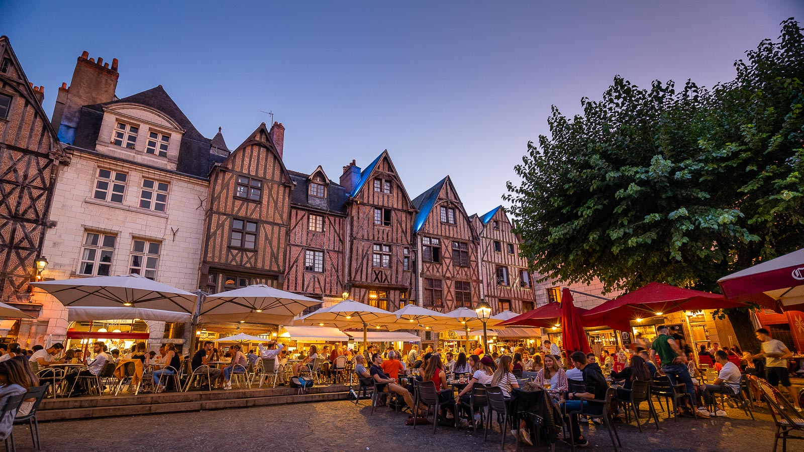 Tours and the finest cities in Touraine Amboise, Chinon, Loches...