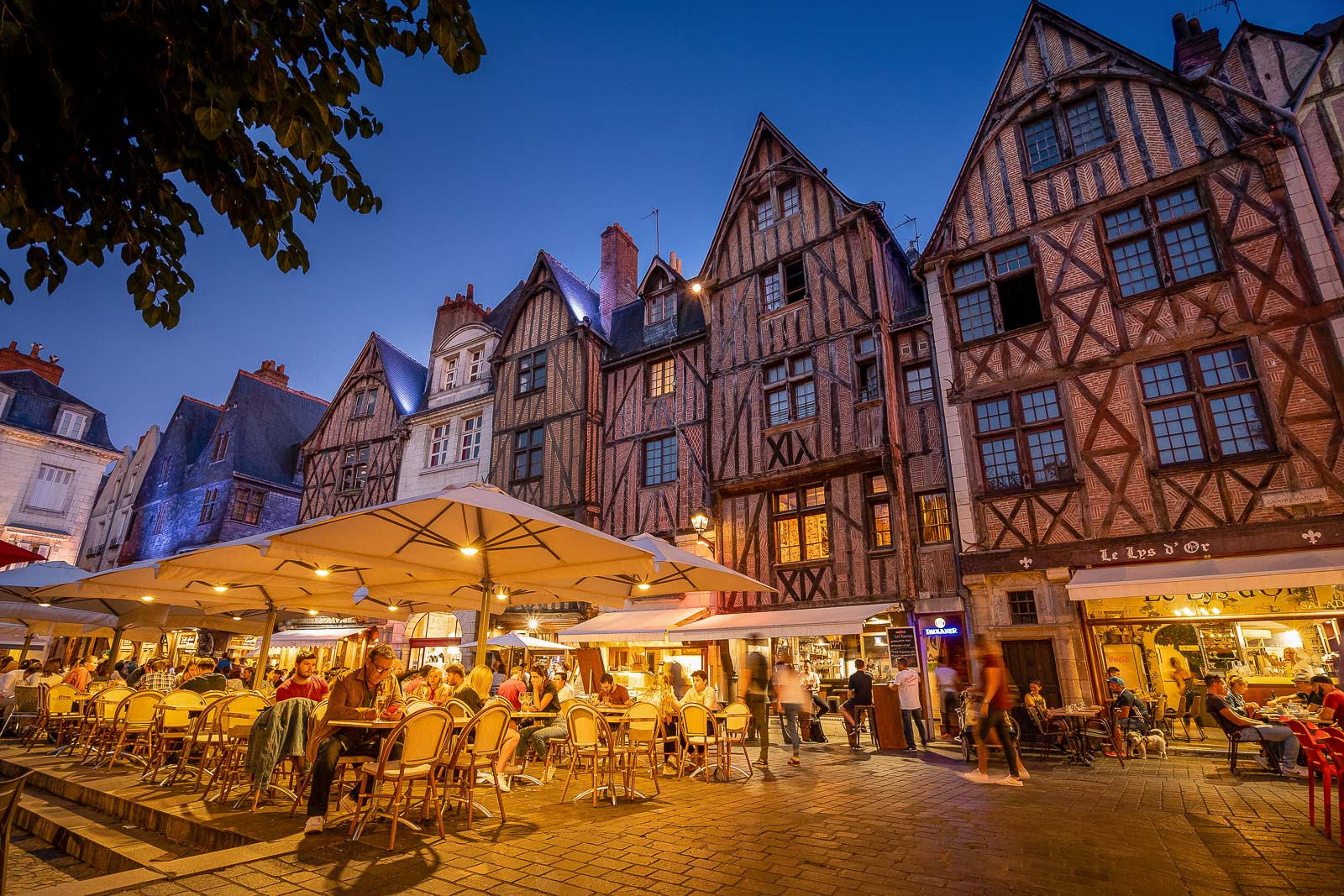 Visit Tours, the gateway city of the Loire Valley   France