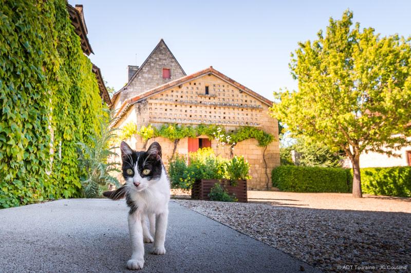 François Rabelais Museum - La Devinière, the native house of François Rabelais in Loire Valley, France. Gargantua, Pantagruel, Panurge...