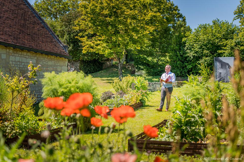 The medicinal plant garden