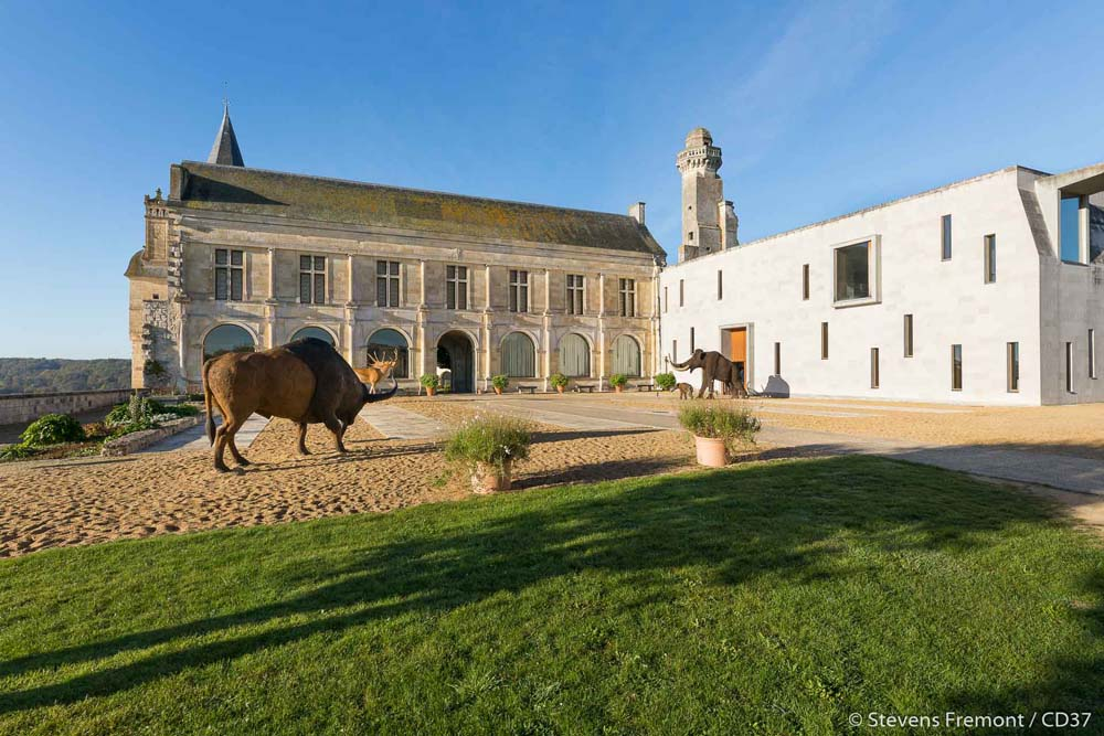 Grand-Pressigny Prehistory Museum