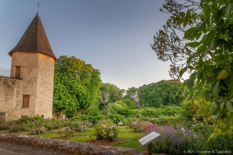Roses colour - The Rivau castle, Loire Valley, France.