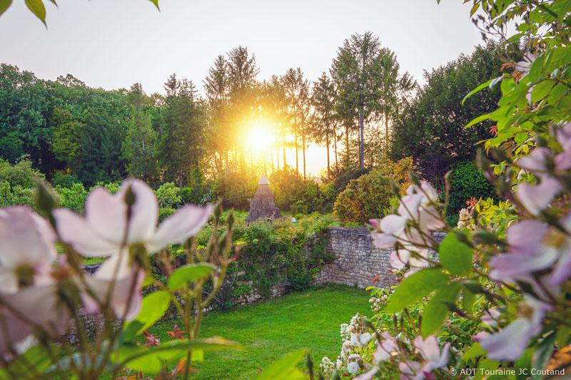 Roses in the garden of the Chateau du Rivau - Lémeré, Loire Valley, France