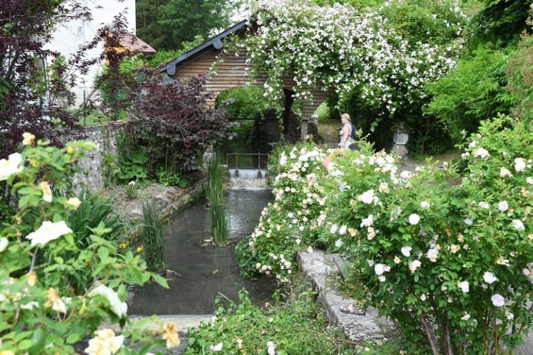 Guided floral tour of Chédigny, both village and garden-4