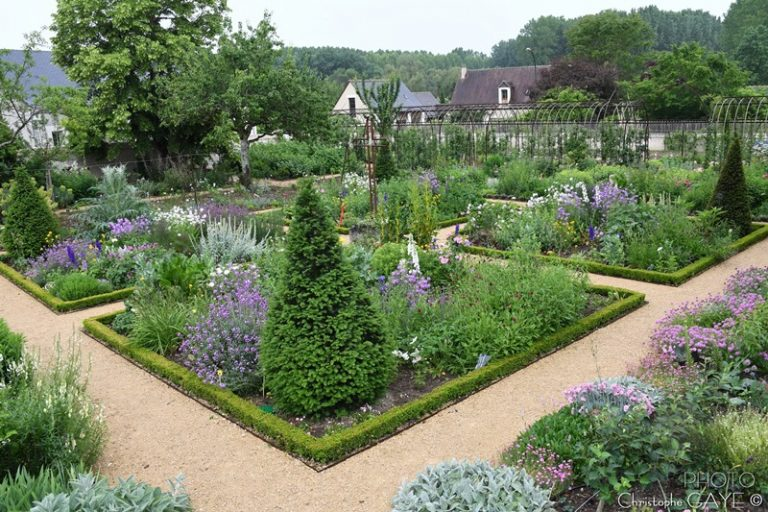 Guided floral tour of Chédigny, both village and garden-11