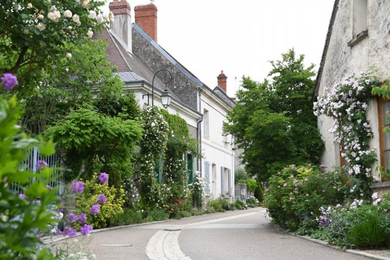Guided floral tour of Chédigny, both village and garden-2