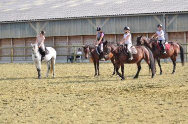 ACVL-Azay-le-Rideau-Centre-Equestre