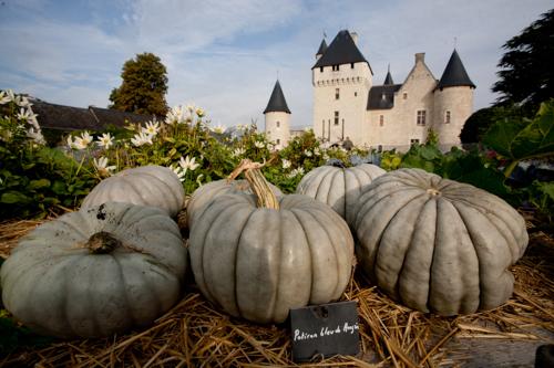 Hôtel du château du Rivau-10