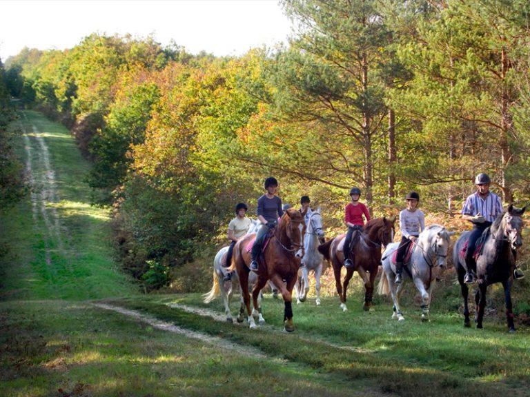 L'Alezane – Riding lessons-1