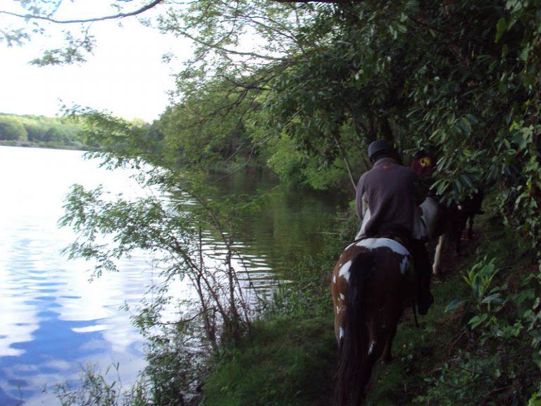 L'Alezane – Riding lessons-3