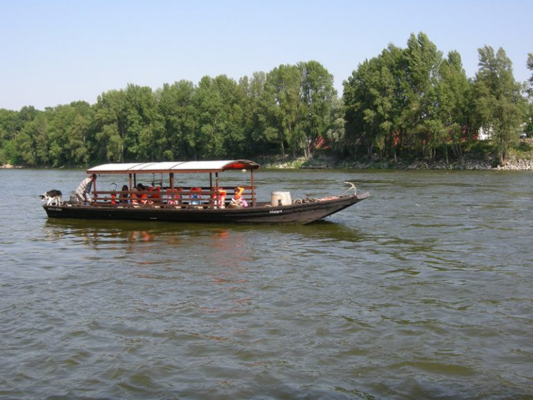 Boat trips on the Loire in Tours-8