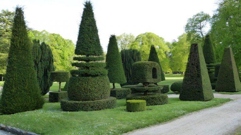 Château, parc et jardins d'Azay-le-Ferron-8
