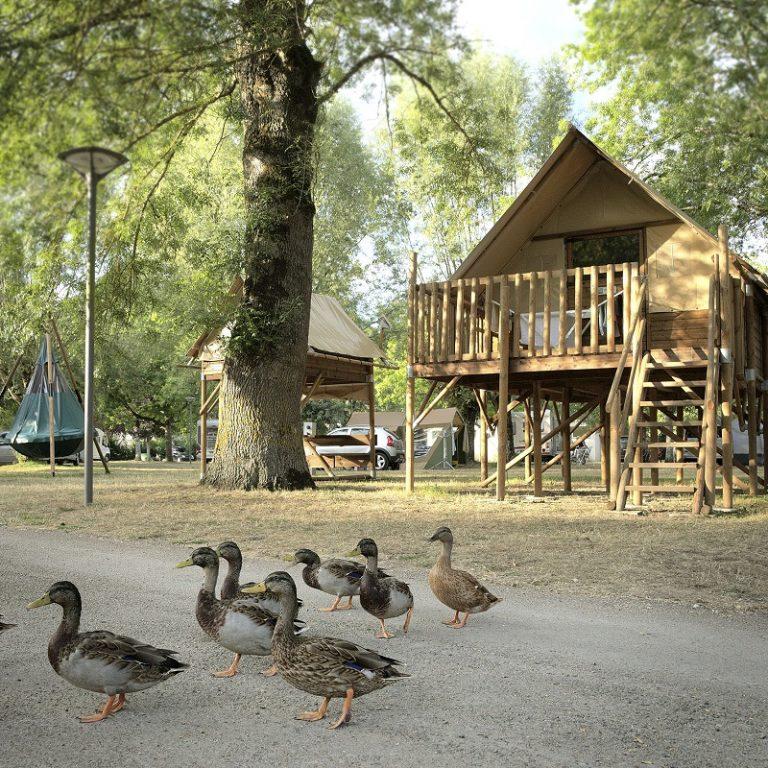 Onlycamp Le Sabot campsite-7