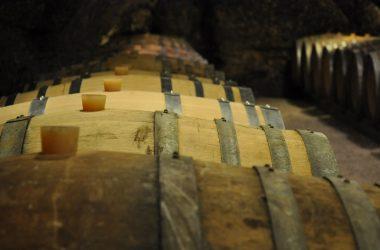 Vincent Carême – Vernou cellar – AOC Vouvray