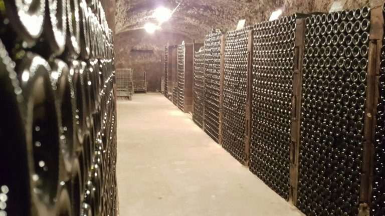 Musée de la vigne, du vin et de la tonnellerie-3