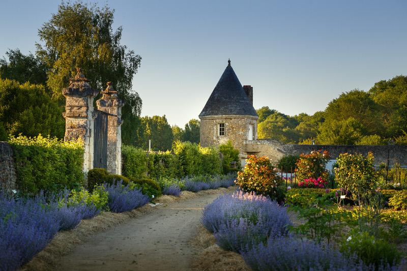 Biodiversity in the garden of Valmer - Loire Valley