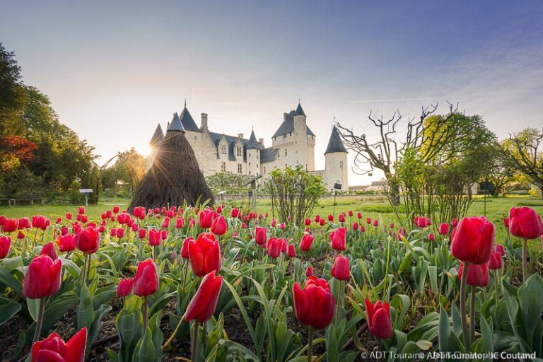 Château and gardens of Le Rivau-2