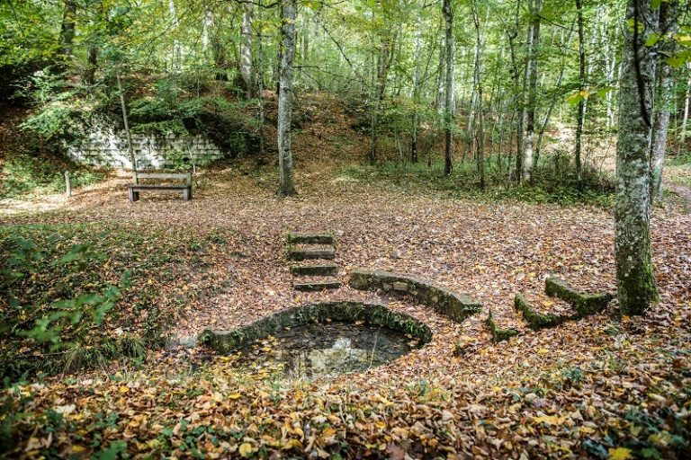 Deep in Loches Forest-2