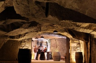Caves Plouzeau – Chinon, France.