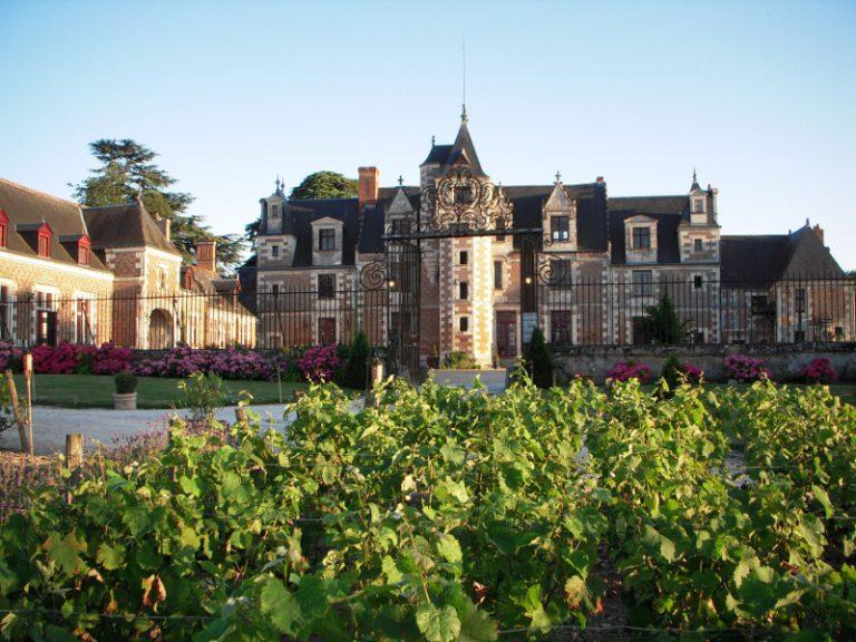 Château of Jallanges-1
