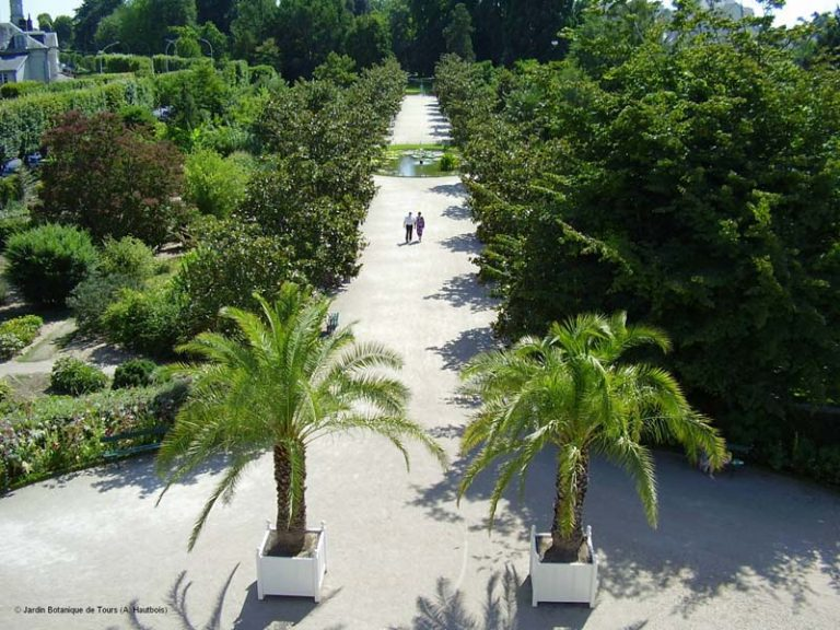 Botanic Garden-4