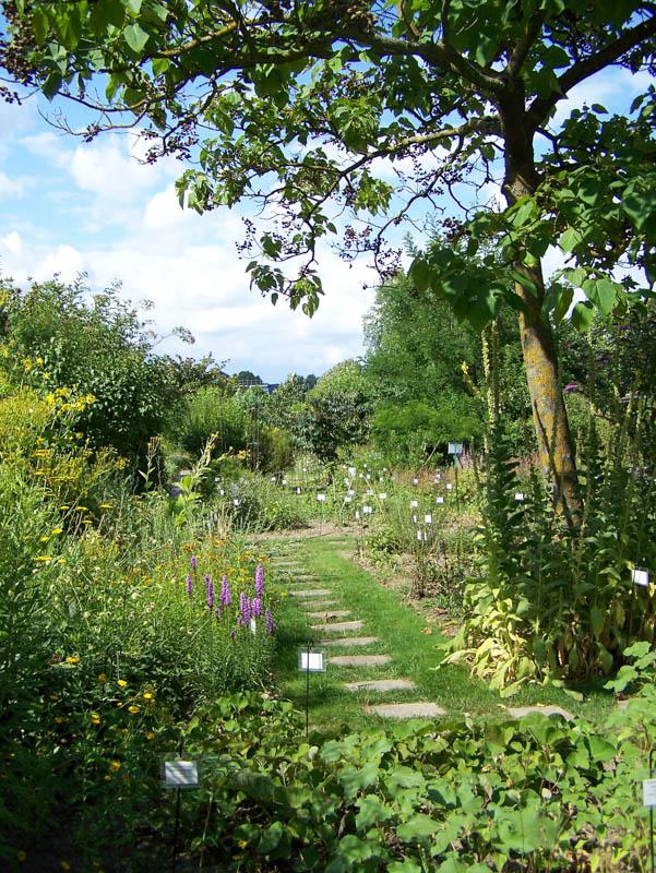Botanic Garden-8