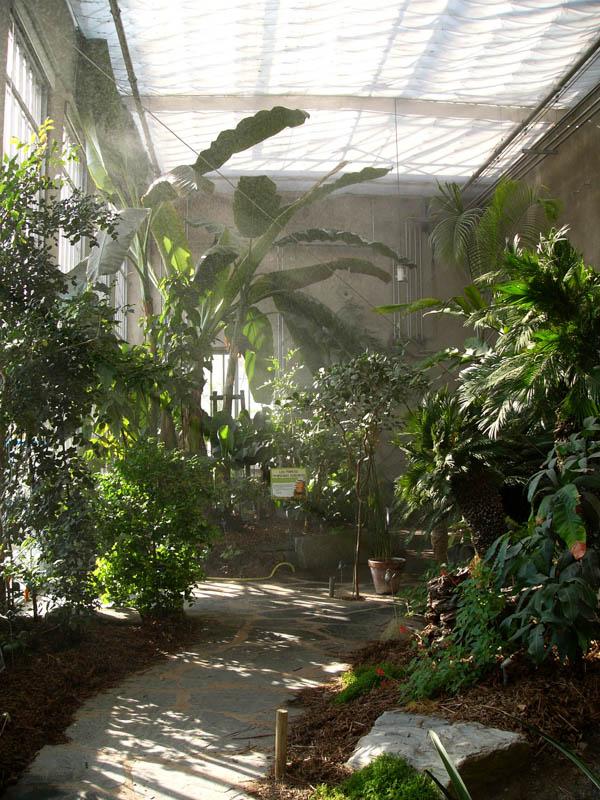 Botanic Garden-11