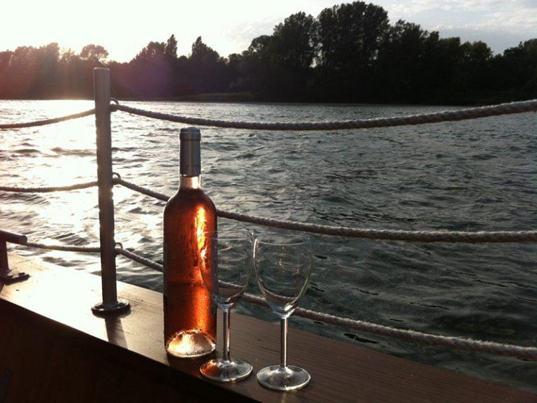 La Toue Reine houseboat-8