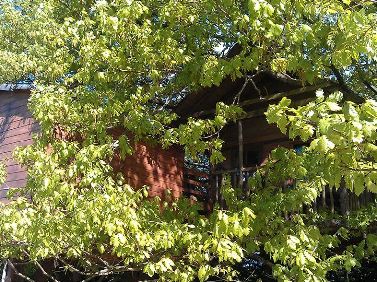 La cabane aux chenes-3
