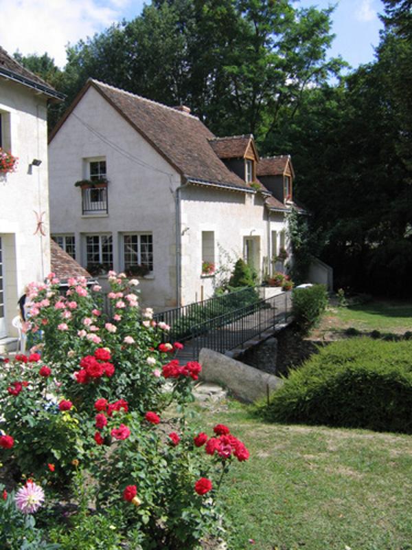 Le Moulin De La Brenne-1