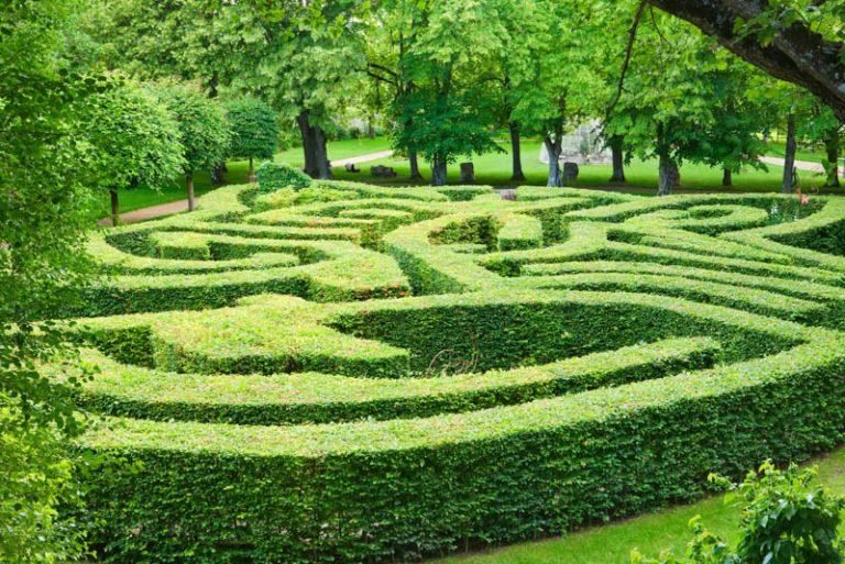 garden escape game in the Rivau's gardens-3