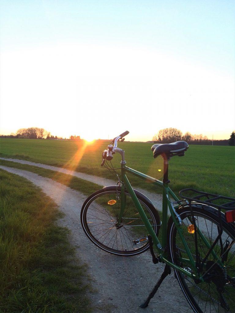 Les Vélos Verts – Tours-1