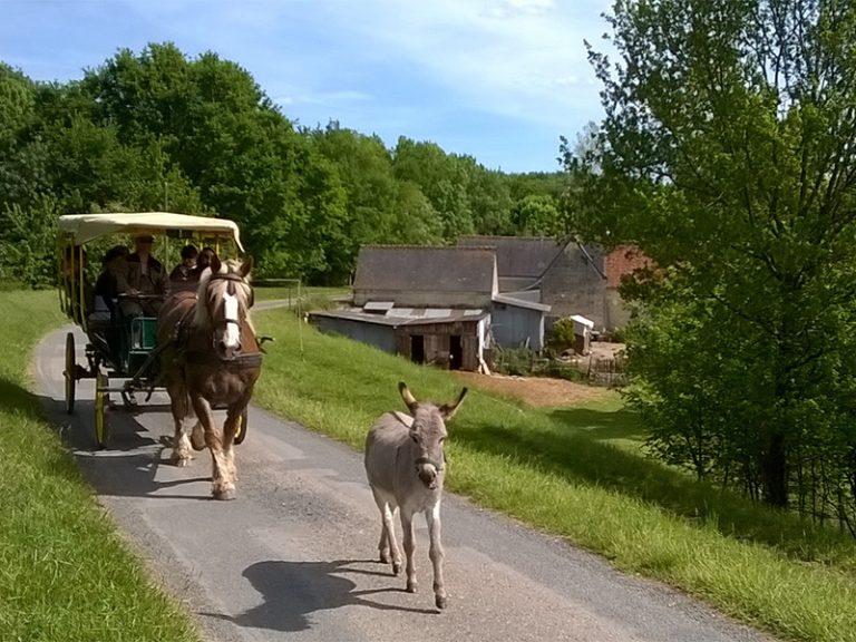 Les attelages de Villandry – Carriage rides-6