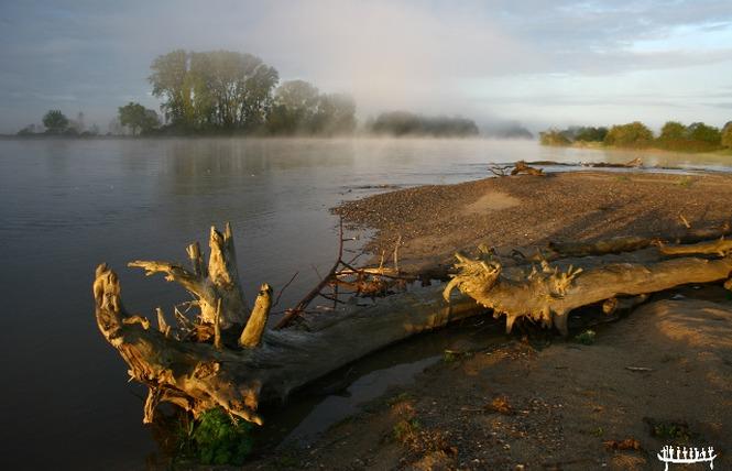 Canoe & Kayak Club of Amboise – Loire Aventure-4