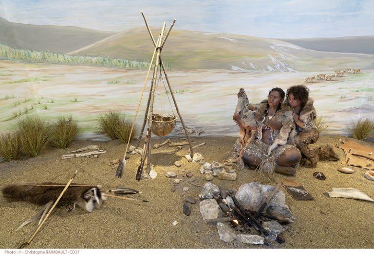 Prehistory Museum of Le Grand-Pressigny-3