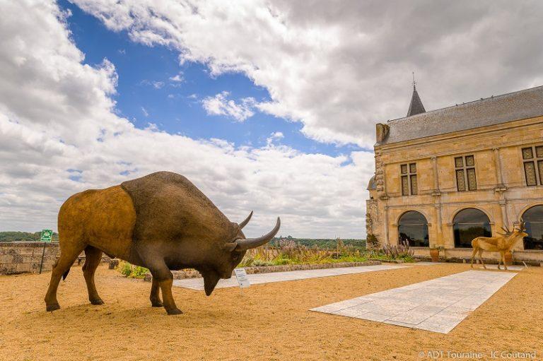 Prehistory Museum of Le Grand-Pressigny-4