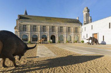 Prehistory Museum of Le Grand-Pressigny
