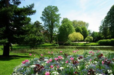 Garden of the Prébendes d'Oé – Tours