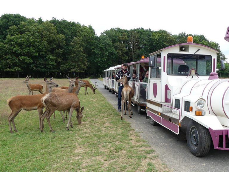 Beaumarchais Wildlife Park-1