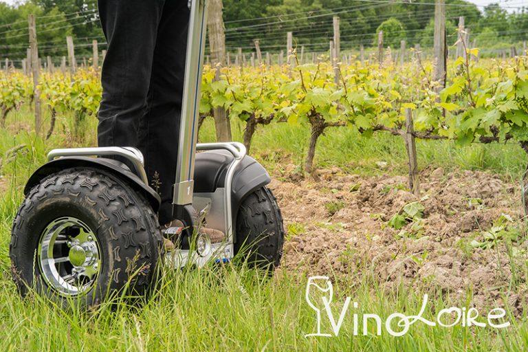 Vinoloire-14