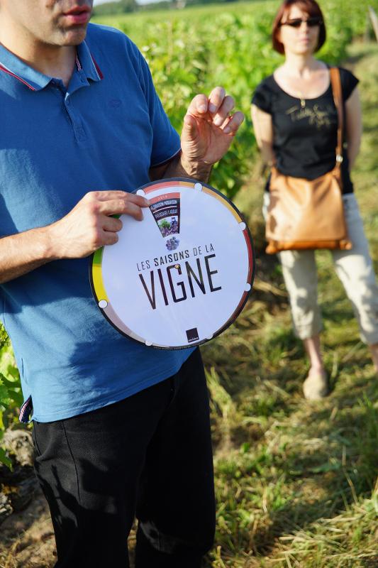 Vinoloire-4