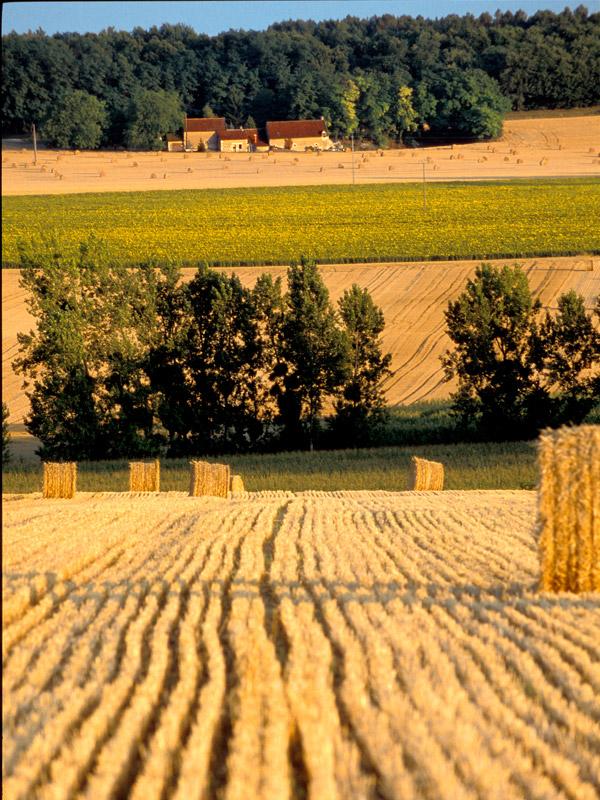 Visit of Crissay-sur-Manse-5