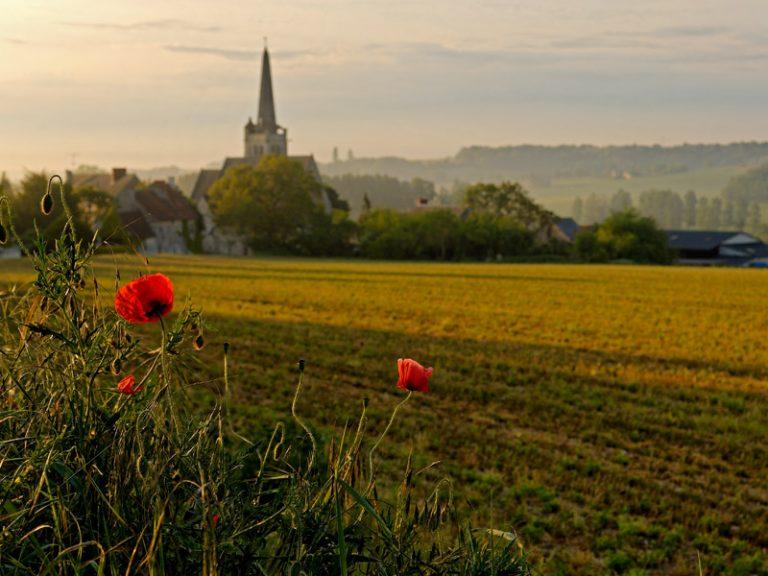 Visit of Crissay-sur-Manse-4