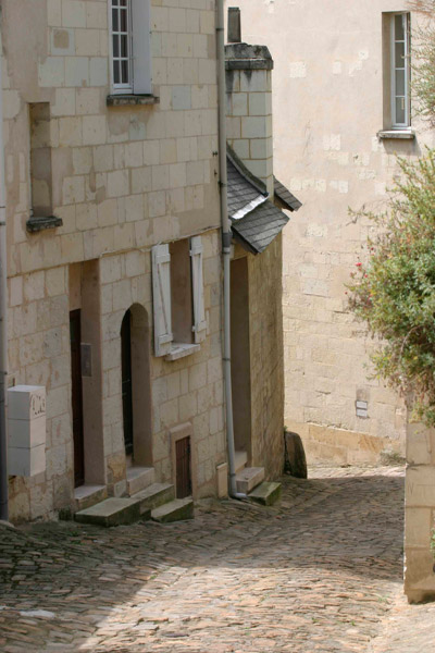 Guided tour of Chinon-2