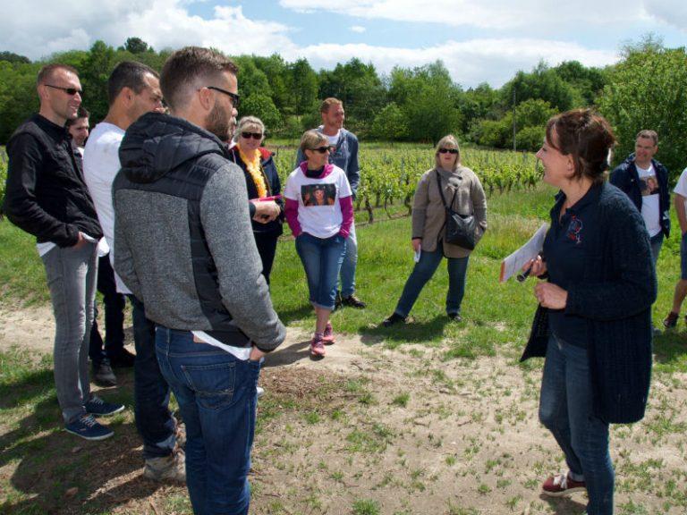 Ame Wine – Wine-related activities-2