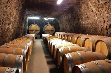 Plou et Fils – Wine cellar near Amboise – Loire Valley, France