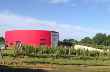 Pierre et Bertrand Couly – Chinon wines, France.